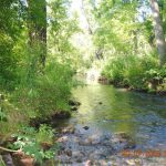 Rowan Creek